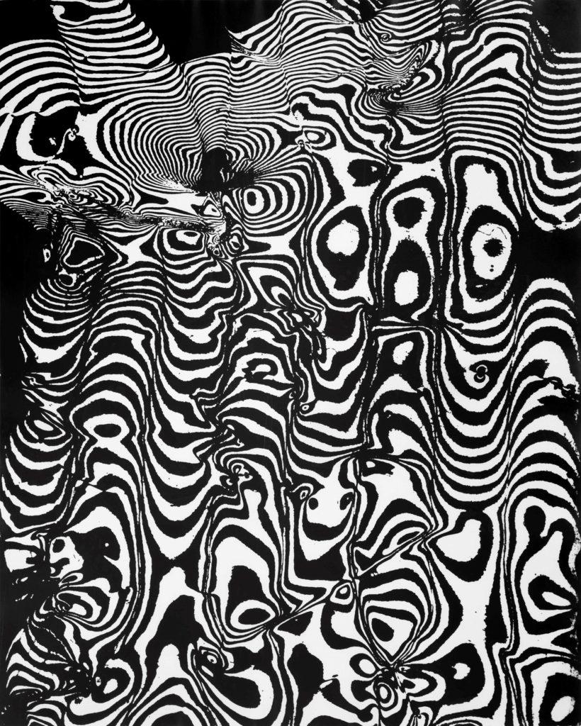 Franco Grignani, Camouflage, 1953